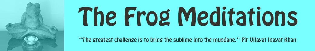 The Frog Meditations